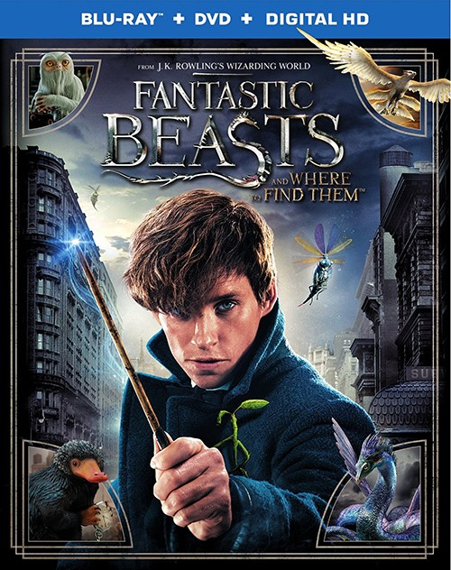 Фантастичні звірі і де їх шукати / Fantastic Beasts and Where to Find Them (2016) Remux 1080p Ukr/Eng | Sub Eng